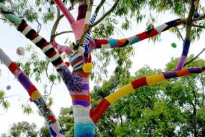В Пензе деревья нарядили в вязаную одежду